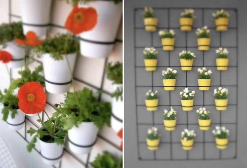 Come coltivare l'orto sul balcone fioriere verticali