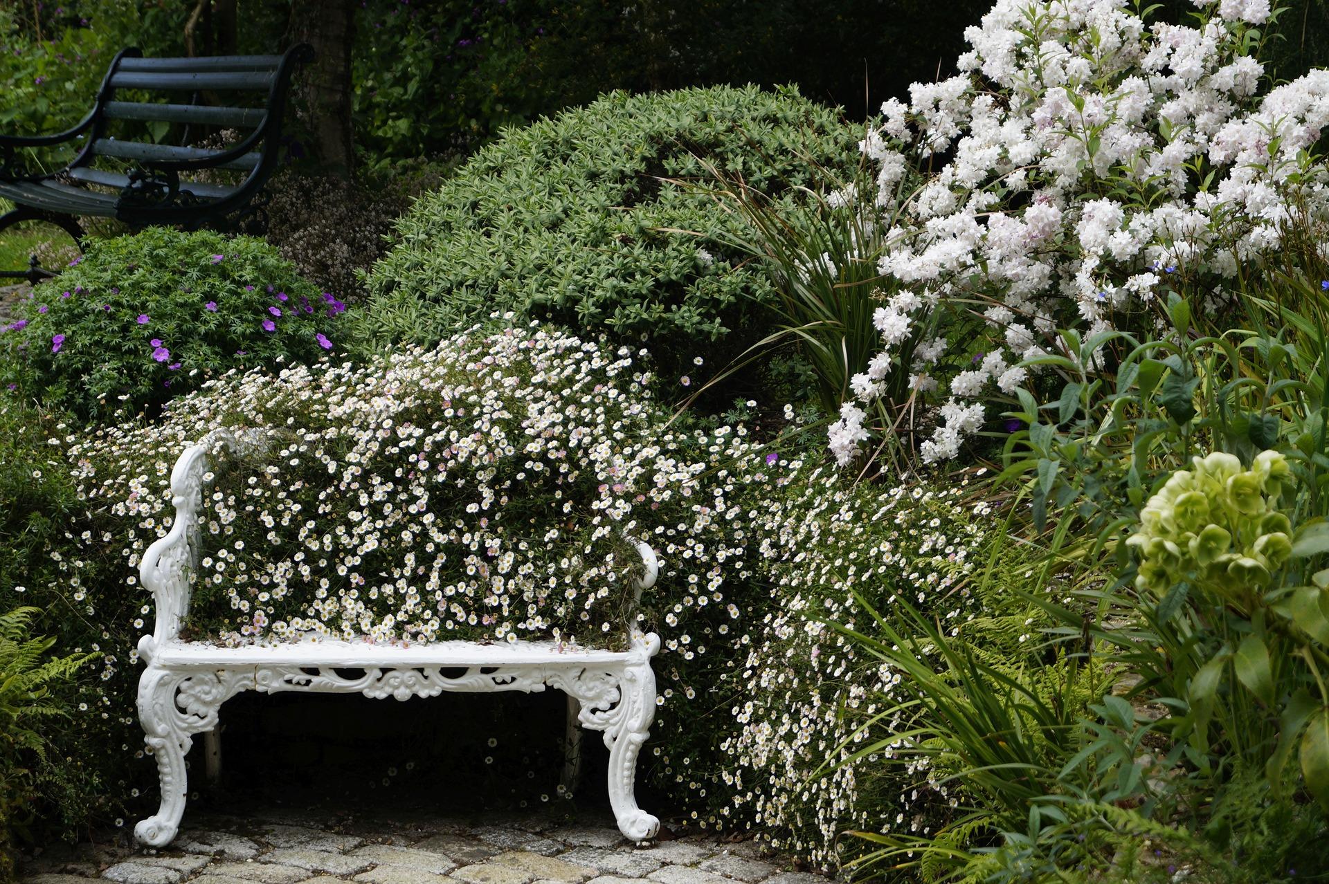 Giardini e terrazzi u casamia idea di immagine